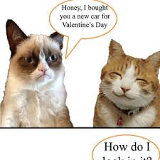 grumpy cat valentines grumpy cat s gift by bibo1334 meme center