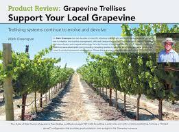 Grape Trellis For Sale Product Review Grapevine Trellises Support Your Local Grapevine