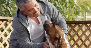 Make Bathtime Fun For Your Dog How To Get Your Dog To Love Bath Time Cesar U0027s Way