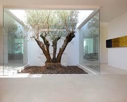 best 25 atrium house ideas on atrium what is an