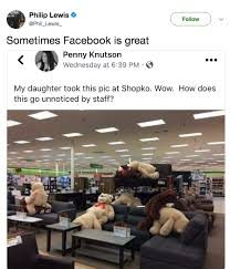 Raunchy Memes - daughter takes ridiculously raunchy pic of teddy bears doing