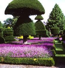 206 best wow gardens images on pinterest roses garden
