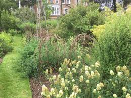 Urban Garden Woodland Hills - caleb melchior journal