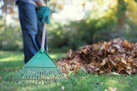 cura giardino la cura giardino in autunno cecconi