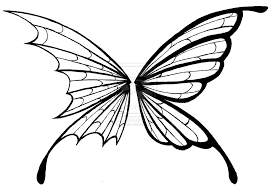 best photos of butterfly wing designs butterfly wing design