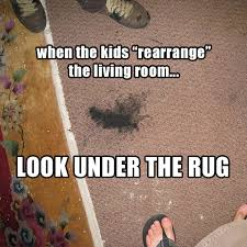 Carpet Cleaning Meme - friday funnies more carpet cleaning memes servicemonster