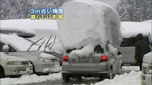 Grumpy Cat Snow Meme - how to not clean you car from snow grumpy cat meme see funny