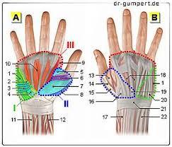 schmerzen in der handfläche handgelenk