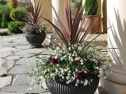 Front Door Planters by How To Use Rocks In Your Landscape Planters Front Doors And Hgtv