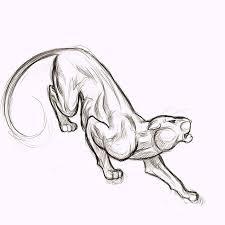 panther drawing google search tat pinterest google search