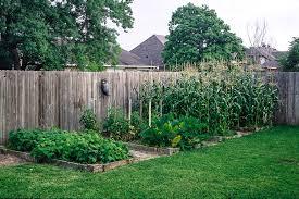natural pest control u2014 planet bee foundation