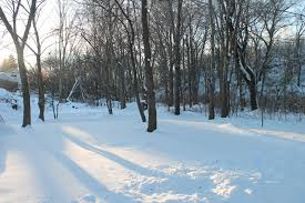 the ice skating pond is like a garden u201d u2026 u2013 the salem garden