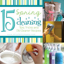 diy house cleaning tips house best art