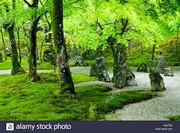 detail of dry zen garden at dazaifu komiyo ji temple fukuoka japan