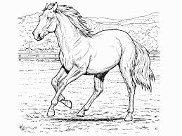 hard horse coloring pages glum me