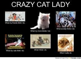 Crazy Lady Meme - funny cat lady memes 28 images crazy cat lady memes image
