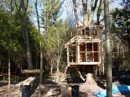 two story tree house plans home design and furniture ideas