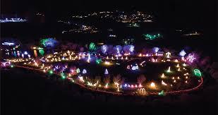 festival of lights serve daily