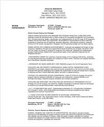director human resources resume federal resume template federal resume template 10 free samples