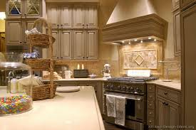 Luxury Cabinets Kitchen by Pictures Of Kitchens Traditional Gray Kitchen Cabinets