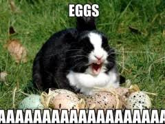 Funny Easter Memes - easter memes weknowmemes