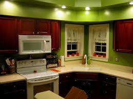 kitchen color ideas with dark cabinets oak cabinet led ceiling