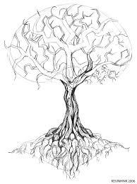 oak tree sketch by mrkevinhinkle on deviantart