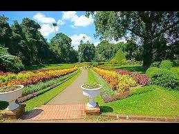 Largest Botanical Garden by Royal Botanical Garden Sri Lanka U0027s Largest Garden Youtube