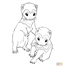 bear coloring page minks colouring pages sketch template cabbage