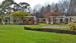 Rose Garden Layout by Old Parliament House Gardens Walk Canberra