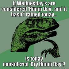 Hump Day Meme - hump day memes page 2