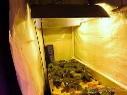 400 Watt Hps Grow Light Led Vs Hps Platinum Led P600 Vs 600w Hps Side By Side Grow How