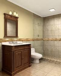 Glass Shelves Bathroom by Bathroom Walk In Shower Doors Wall Mounted Chrome Double Towel