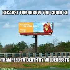 Lion King Memes - view topic lion king memes my lion king forum