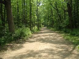 Des Plaines Il by Des Plaines River Trail Wikipedia