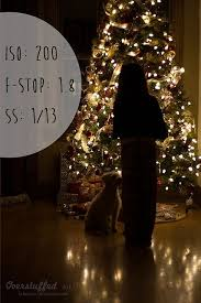 Christmas Tree Stop - best 25 christmas tree photography ideas on pinterest