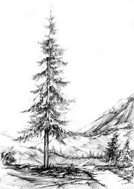 wintery trail sketching trees pencil or pen good example of