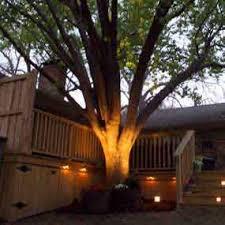 Landscape Flood Light Paradise By Sterno Home Low Voltage Cast Aluminum 50