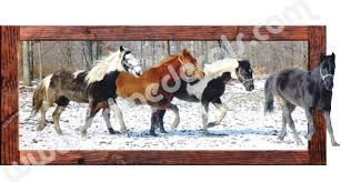 horse wall decal mural large wall decals primedecals addthis sharing sidebar