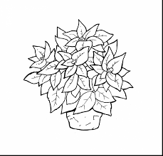 outstanding holly wreath color pages with poinsettia coloring page