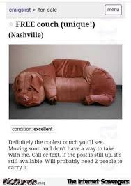 Funny Pig Memes - free pig couch funny craigslist offer pmslweb