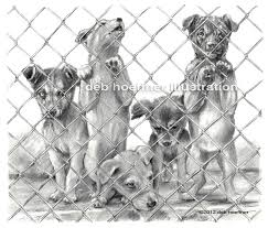 shelter puppies illustration for childrens book drawing deb hoeffner