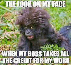 Meme Monkey - a crazy monkey memes imgflip