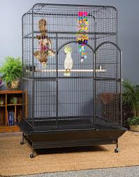 large bird cages oahu oasis large bird cage with playtop