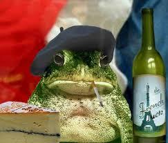 Frog Memes - viva la frog memes home facebook