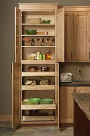 Kitchen Cabinet Rollouts Back To Is Your Kitchen Ready