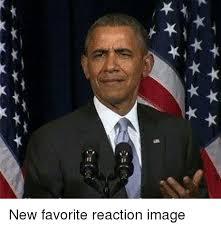 Reaction Meme - 羊羊羊羊 부부 new favorite reaction image meme on me me