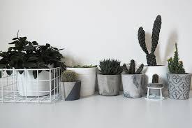 concrete planters u0026 projects diy cement plant pots u0026 projects
