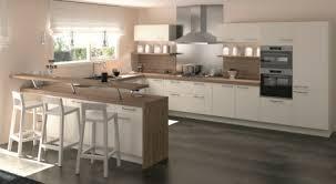 cuisine aménagé cuisine am nag e r servez votre meubles delannoy photos de amenagee