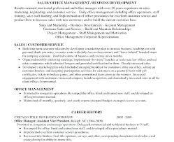 summary resume exles personal summary resume exles resume goal exles personal